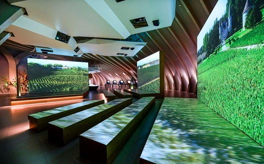 Le Parcours permanent : un voyage initiatique au cœur des cultures du vin